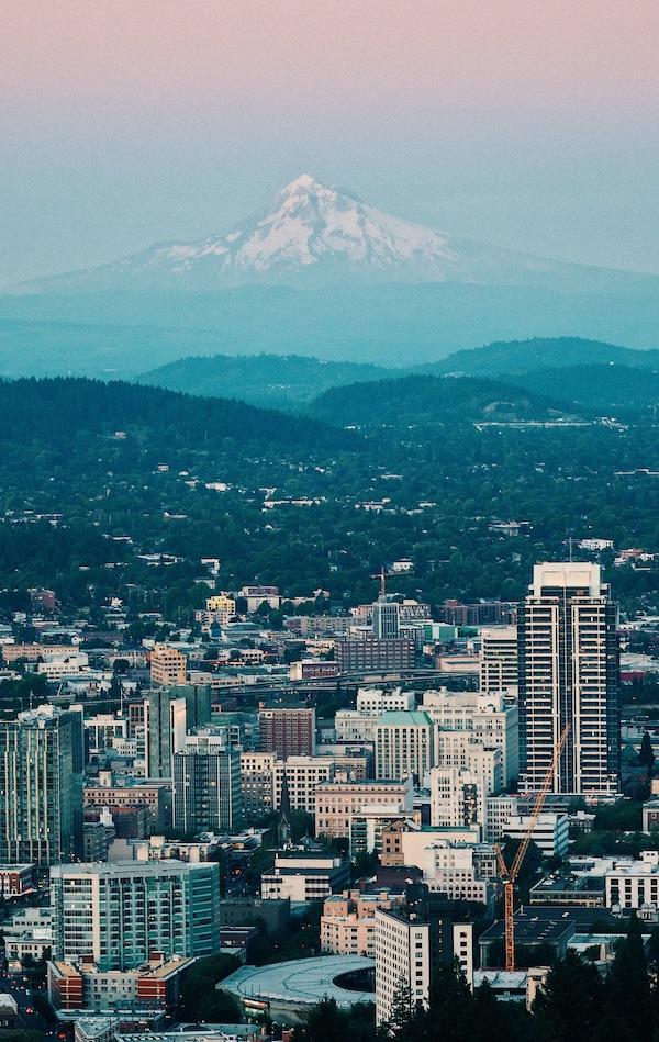 Portland tips